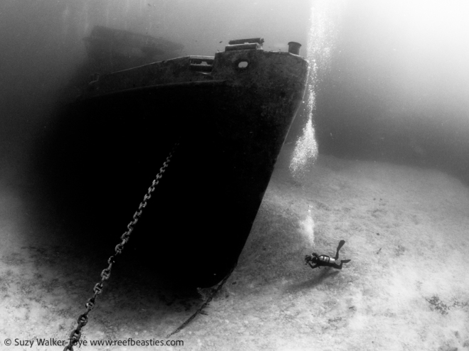 Diver photographing the wreck of the Kittiwake, model: Henley Spiers, Cayman 2016
