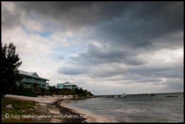 cayman-beach-2_31525714340_o