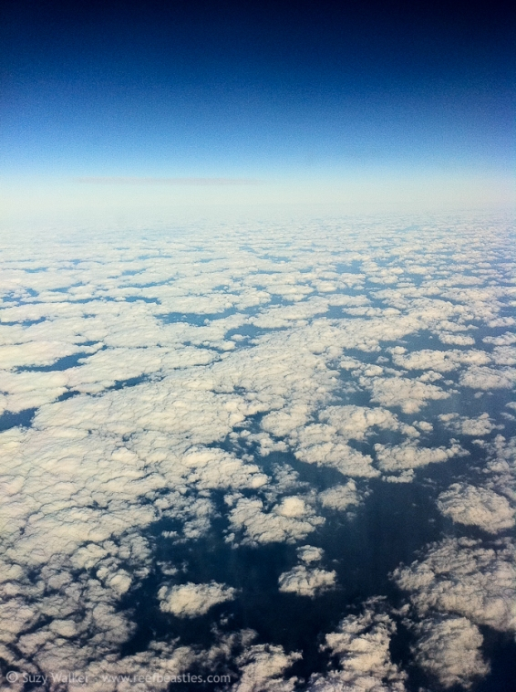 clouds_31527776760_o